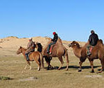 camel riding in elsen tasarkhai
