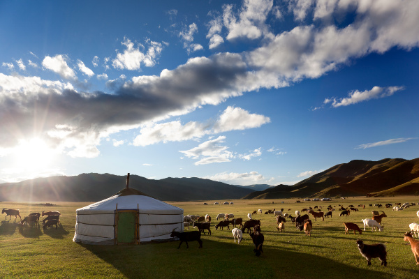top reasons to travel to Mongolia