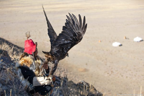 mongolian eagle hunters